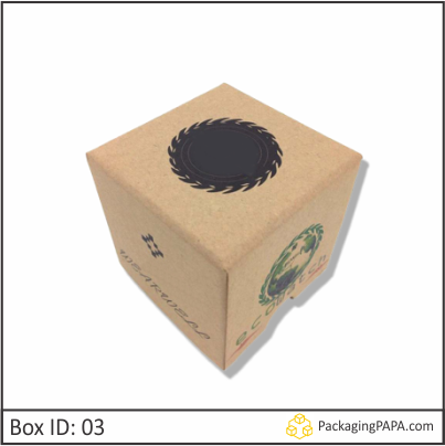 Cardboard Wrist Watch Packaging Boxes 03