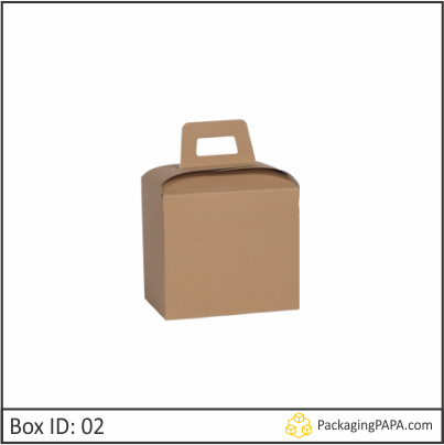 Custom Carry Packaging Boxes